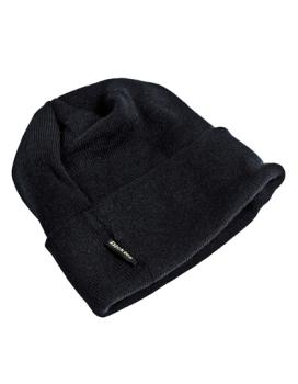 Dickies Watch Cap Mütze Thinsulate